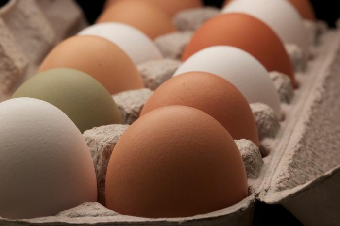 soft & simple scrambled eggs & ramps//wanderaven