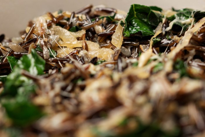 smitten's wild rice gratin//wanderaven